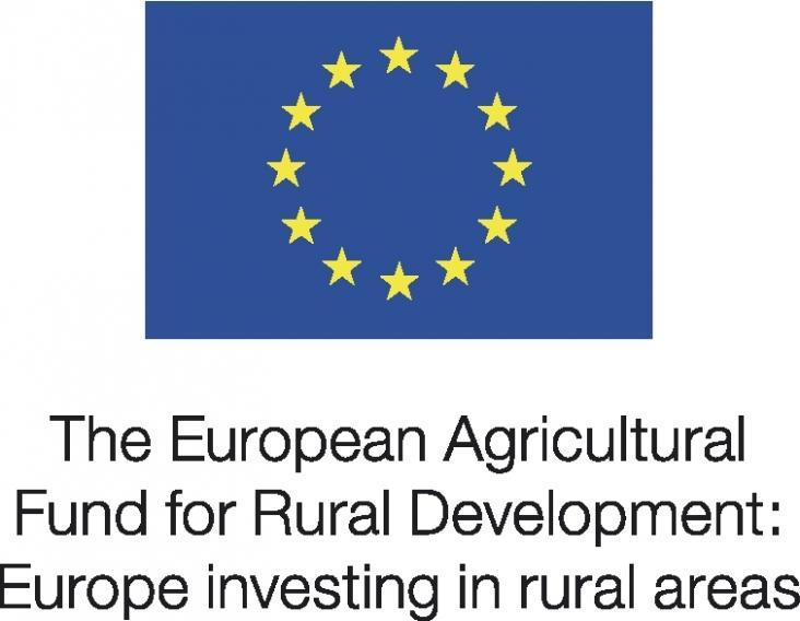 EU Logo 1
